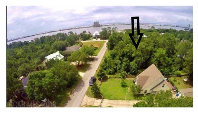 0 E Brigadoon Trail, Gulf Shores, AL 36542 (MLS #274065) :: Elite Real Estate Solutions