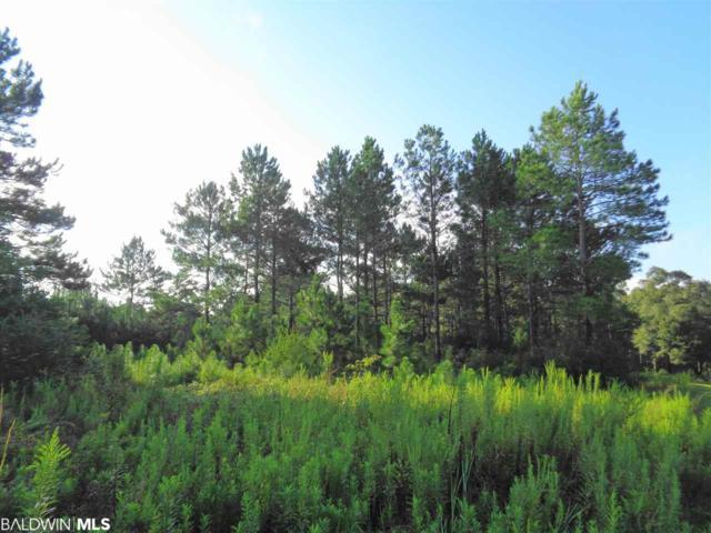 0 Cowpen Creek Road, Atmore, AL 36502 (MLS #274092) :: Elite Real Estate Solutions