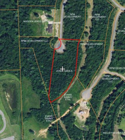 0 Ridgefield Lane, Brewton, AL 36426 (MLS #274684) :: Elite Real Estate Solutions