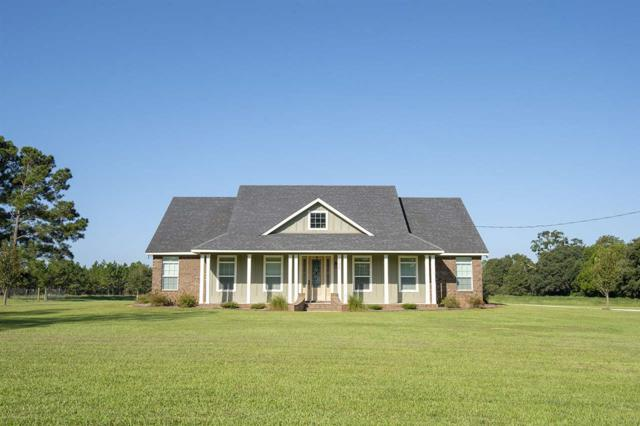 25475 County Road 55, Loxley, AL 36551 (MLS #275328) :: Jason Will Real Estate