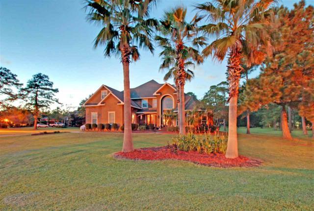 6527 E Quarry Dr, Elberta, AL 36530 (MLS #275522) :: Elite Real Estate Solutions