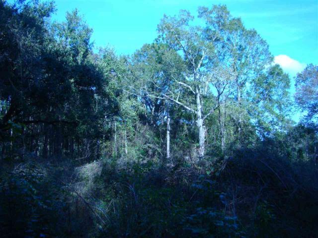 0 Lilly Wilson Lane, Bay Minette, AL 36507 (MLS #276072) :: Jason Will Real Estate
