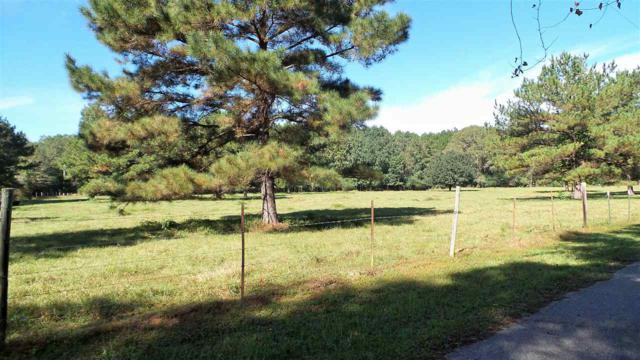 1 Bryants Landing Road, Stockton, AL 36579 (MLS #276093) :: ResortQuest Real Estate