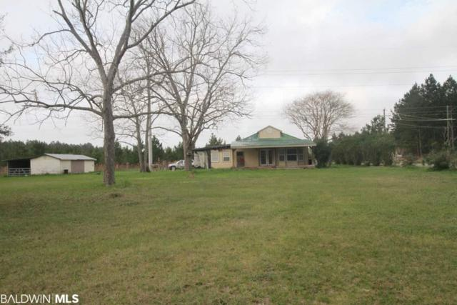12487 Wortel Rd, Elberta, AL 36530 (MLS #276991) :: ResortQuest Real Estate