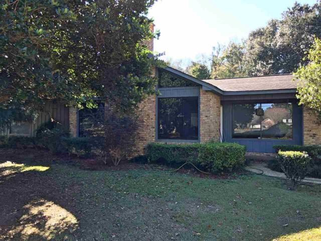 16162 Highway 98, Foley, AL 36535 (MLS #277678) :: Elite Real Estate Solutions