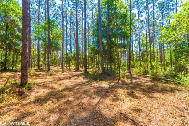 0 Scott Lane, Lillian, AL 36549 (MLS #278292) :: EXIT Realty Gulf Shores