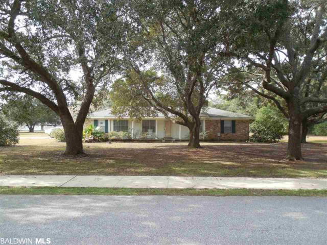 4100 Lauder Lane, Orange Beach, AL 36561 (MLS #278626) :: Elite Real Estate Solutions
