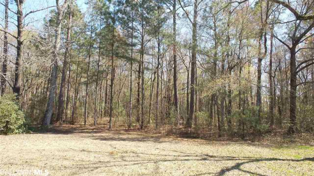 15596 N Brady Road, Bay Minette, AL 36507 (MLS #278845) :: JWRE Mobile