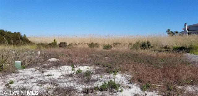 lot 35 Sea Horse Circle, Gulf Shores, AL 36542 (MLS #279271) :: Elite Real Estate Solutions