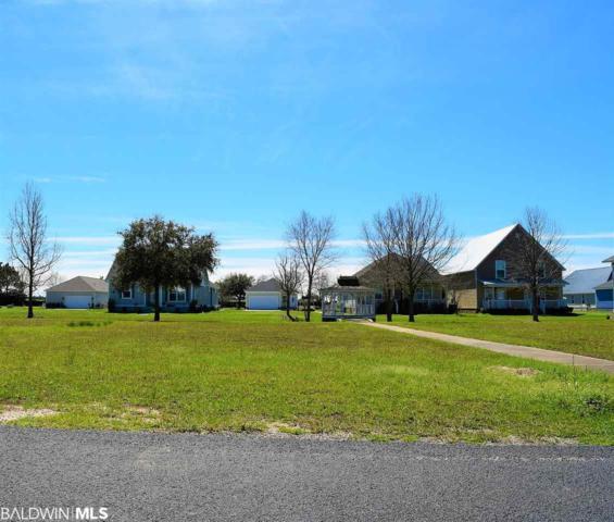 Lot 158 Pink Poppy Lane, Foley, AL 36535 (MLS #279503) :: Jason Will Real Estate
