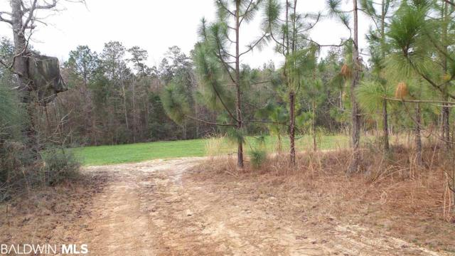 0 Hwy 97 A, Walnut Hill, FL 32568 (MLS #279895) :: ResortQuest Real Estate