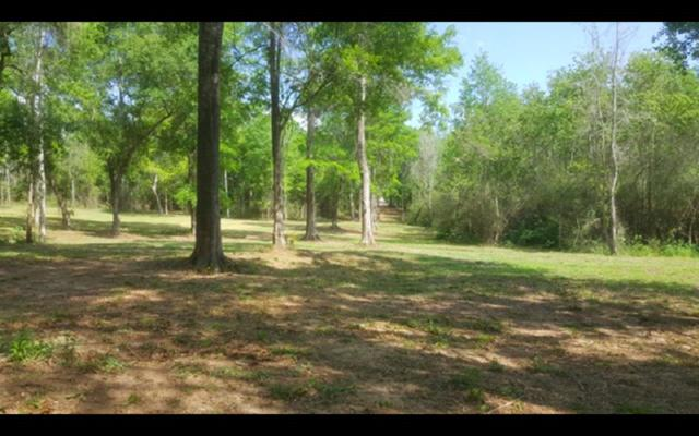 0001 County Road 55, Loxley, AL 36551 (MLS #280443) :: Elite Real Estate Solutions