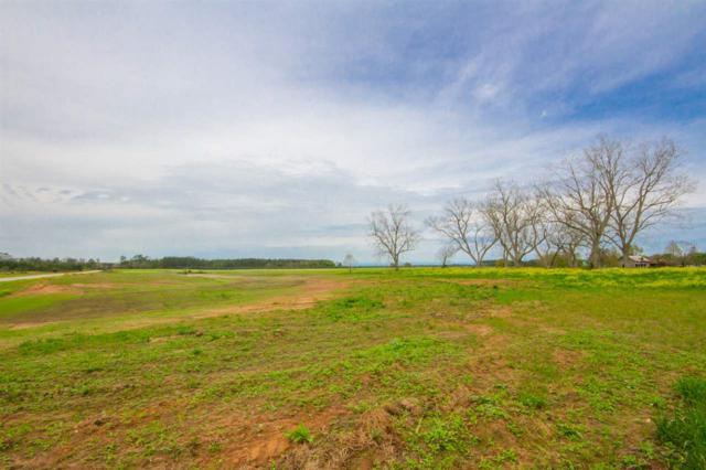 0 Gardner Rd, Elberta, AL 36530 (MLS #281403) :: Ashurst & Niemeyer Real Estate