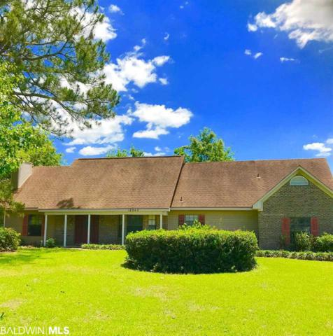 18940 County Road 12, Foley, AL 36535 (MLS #284058) :: Jason Will Real Estate