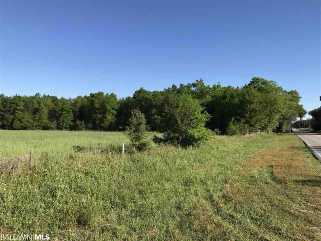 0000 N County Road 91, Lillian, AL 36549 (MLS #286022) :: Jason Will Real Estate