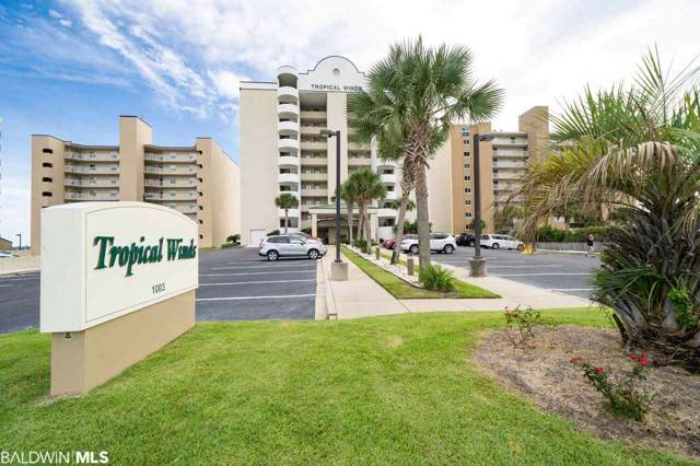1003 W Beach Blvd #304, Gulf Shores, AL 36542 (MLS #289880) :: Dodson Real Estate Group