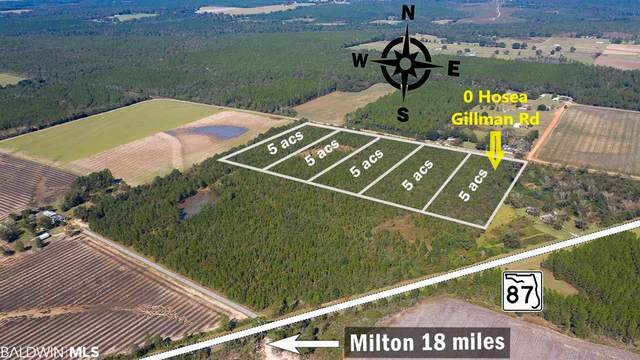 0 Hosea Gillman Rd, Milton, FL 32570 (MLS #291323) :: ResortQuest Real Estate