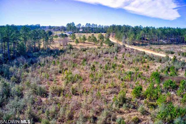 0 Diana Estates Drive, Mobile, AL 36587 (MLS #293522) :: EXIT Realty Gulf Shores