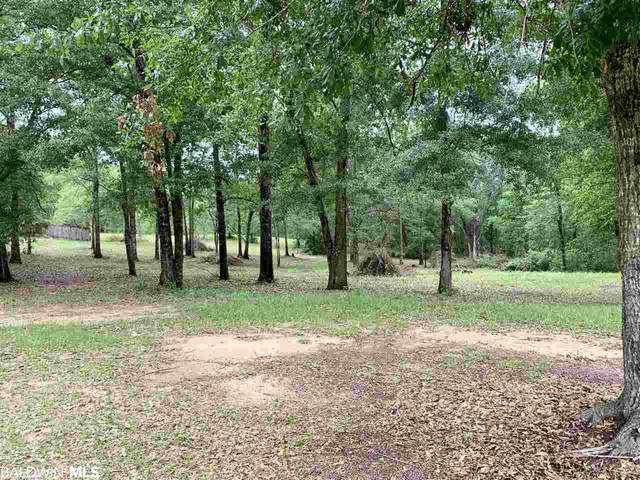 0 Turning Leaf Drive, Loxley, AL 36551 (MLS #299091) :: Coldwell Banker Coastal Realty