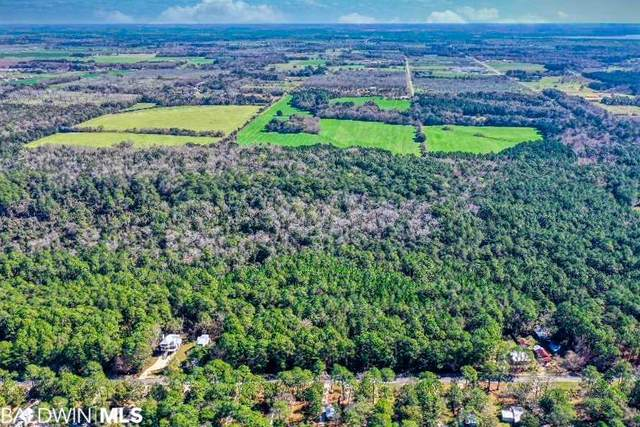 Lot 220 Scenic Highway 98, Fairhope, AL 36532 (MLS #302359) :: Coldwell Banker Coastal Realty