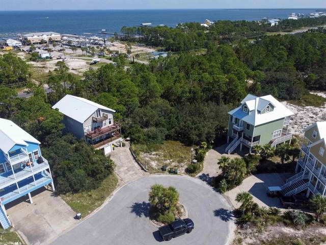 Shell Ln, Gulf Shores, AL 36542 (MLS #308274) :: Dodson Real Estate Group