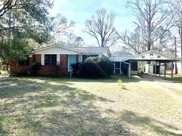 6895 Piney Woods Rd., Foley, AL 36535 (MLS #308561) :: Sold Sisters - Alabama Gulf Coast Properties