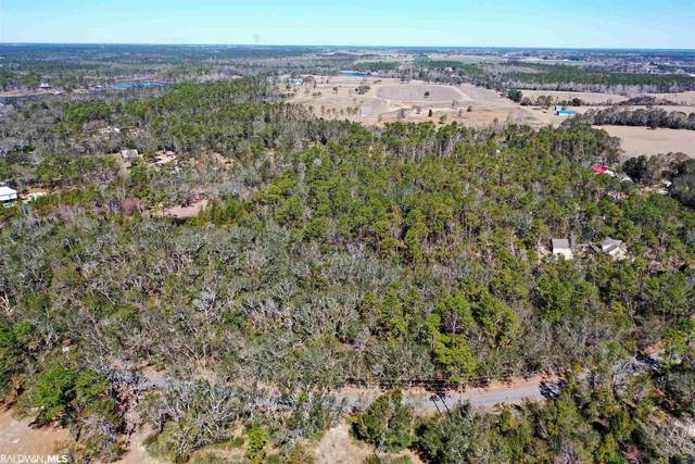 0 Soldier Creek Rd, Lillian, AL 36549 (MLS #308651) :: Bellator Real Estate and Development