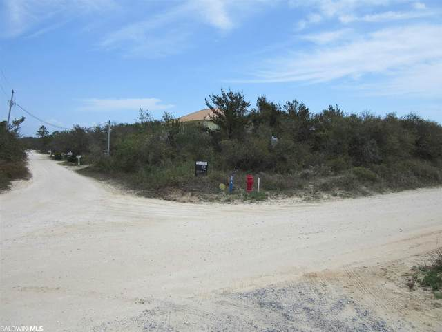 0 Dolphin Lane, Gulf Shores, AL 36542 (MLS #310963) :: Sold Sisters - Alabama Gulf Coast Properties