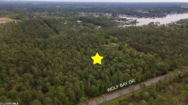 0 Wolf Bay Dr, Foley, AL 36542 (MLS #312240) :: Sold Sisters - Alabama Gulf Coast Properties