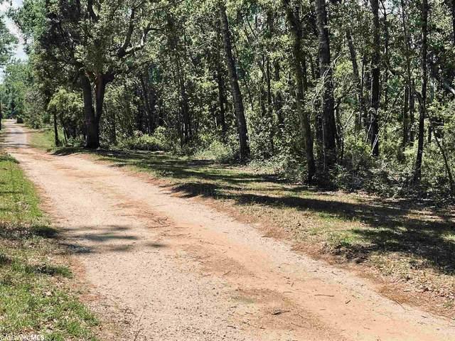 10791 County Road 99, Lillian, AL 36549 (MLS #313834) :: RE/MAX Signature Properties