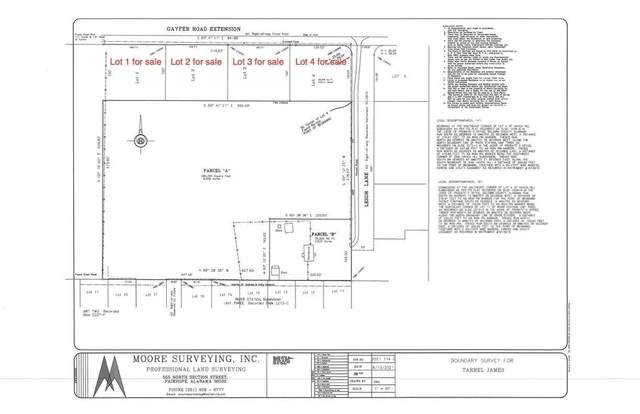 0 Gayfer Road Ext, Fairhope, AL 36526 (MLS #315563) :: Elite Real Estate Solutions