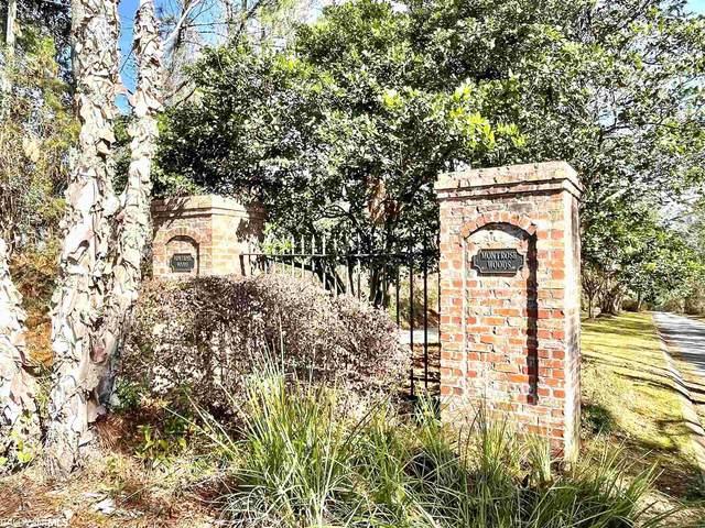 0 Montrose Woods Drive, Fairhope, AL 36532 (MLS #315968) :: Dodson Real Estate Group