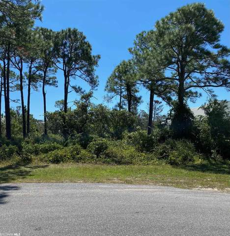 Osprey Drive, Orange Beach, AL 36561 (MLS #320284) :: Mobile Bay Realty