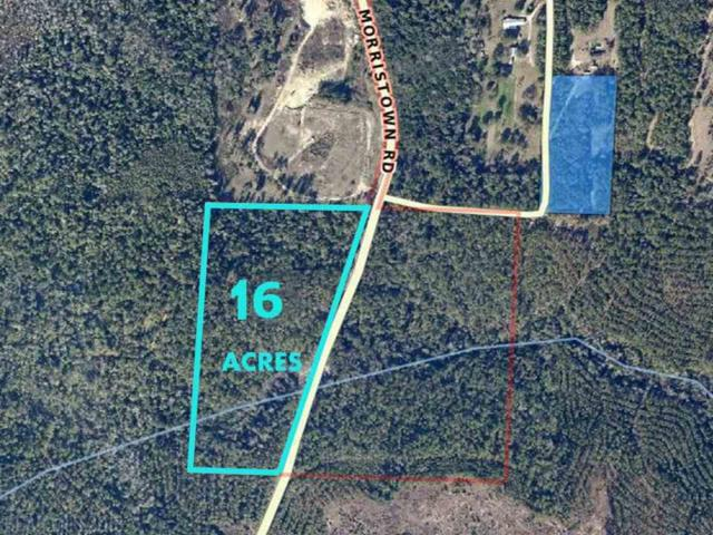 1 Morristown Road, Jay, FL 32565 (MLS #223820) :: Elite Real Estate Solutions