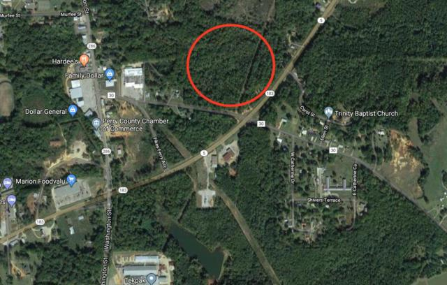 0 Fikes Ferry Rd, Marion Junction, AL 36756 (MLS #263171) :: Elite Real Estate Solutions