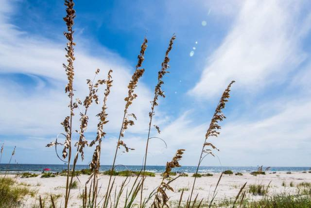 2092 Ponce De Leon Court, Gulf Shores, AL 36542 (MLS #264418) :: Gulf Coast Experts Real Estate Team