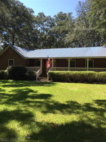 14335 County Road 65, Foley, AL 36535 (MLS #274858) :: Gulf Coast Experts Real Estate Team
