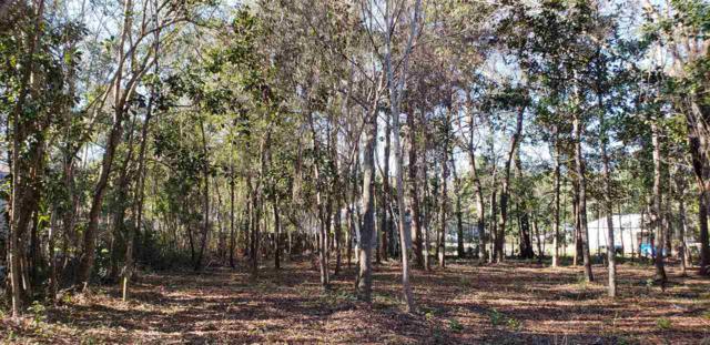0 Park Ln, Orange Beach, AL 36561 (MLS #277711) :: Gulf Coast Experts Real Estate Team