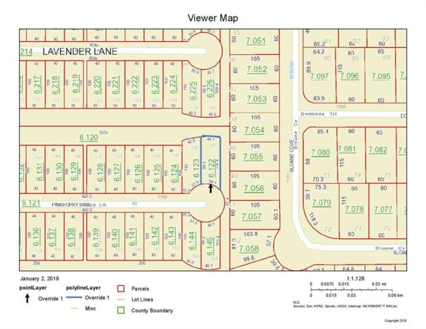 Pink Poppy Lane, Foley, AL 36535 (MLS #277868) :: Gulf Coast Experts Real Estate Team