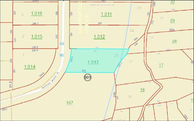 0 Montrose Woods Drive, Fairhope, AL 36532 (MLS #278700) :: Jason Will Real Estate
