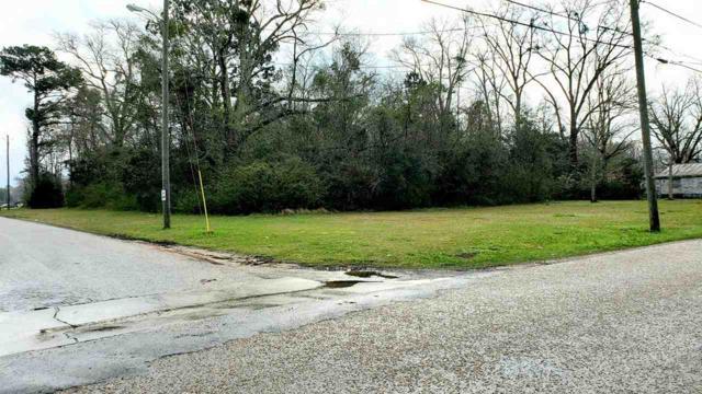0 St Hwy 59, Bay Minette, AL 36507 (MLS #280015) :: Jason Will Real Estate