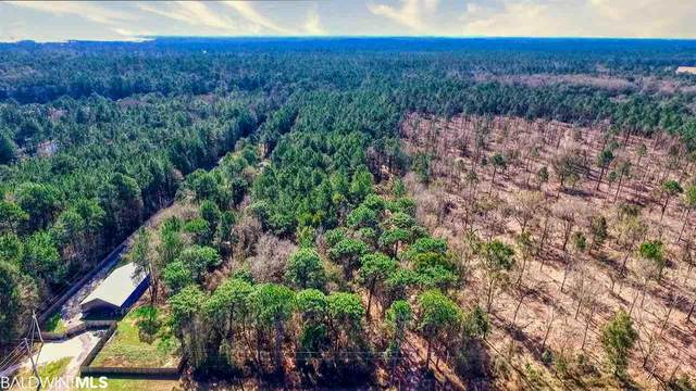Lot 3 County Road 12, Foley, AL 36535 (MLS #285433) :: Alabama Coastal Living