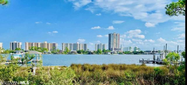 0 Moses Rd, Orange Beach, AL 36561 (MLS #285940) :: ResortQuest Real Estate