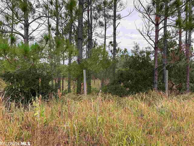 0 Lakeshore Drive, Gulf Shores, AL 36547 (MLS #291295) :: Alabama Coastal Living