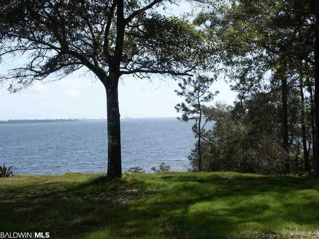 County Road 99, Lillian, AL 36549 (MLS #291556) :: Gulf Coast Experts Real Estate Team
