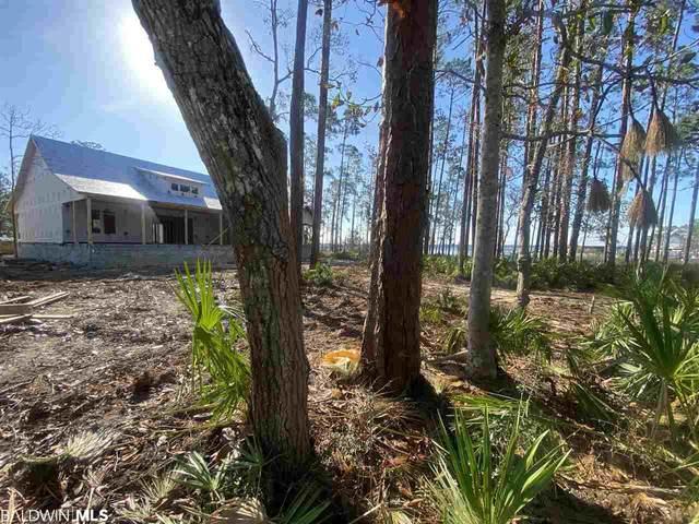 28885 Hopetown Lane, Elberta, AL 36530 (MLS #301153) :: Dodson Real Estate Group