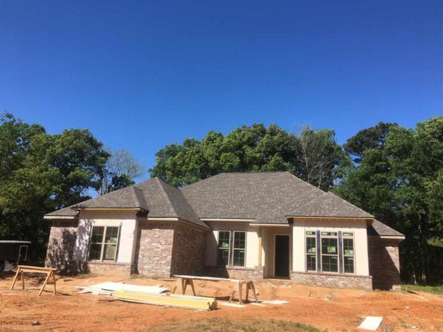 253 Fennec St, Fairhope, AL 36532 (MLS #257797) :: Karen Rose Real Estate