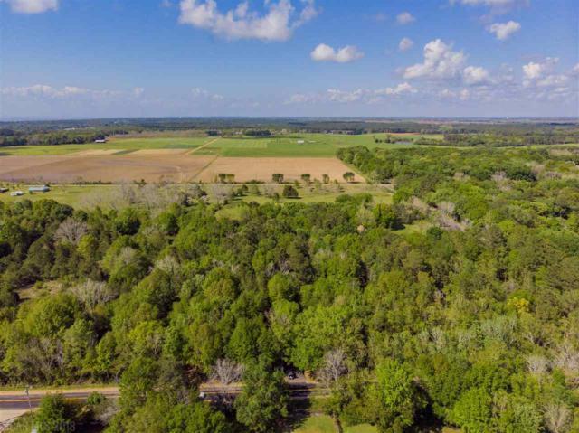 10382 Gayfer Road Ext, Fairhope, AL 36532 (MLS #263661) :: Gulf Coast Experts Real Estate Team