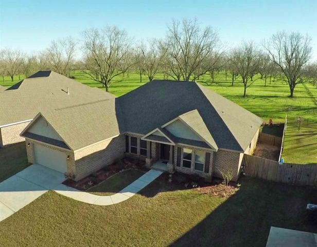 10096 Dunmore Drive, Daphne, AL 36526 (MLS #276663) :: ResortQuest Real Estate