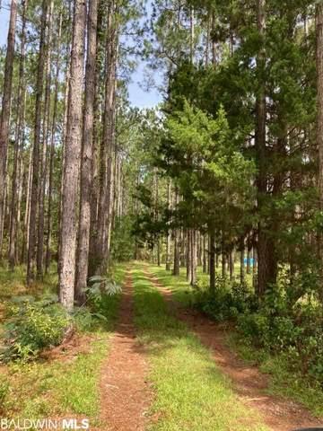 10828 Deer Foot Lane, Elberta, AL 36530 (MLS #290271) :: Elite Real Estate Solutions